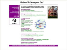 Baines Co Surveyors Ltd