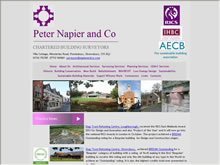 Napier & Co Ltd