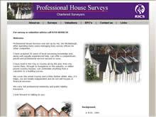 Professional House Surveys