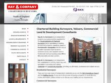 Ray & Company